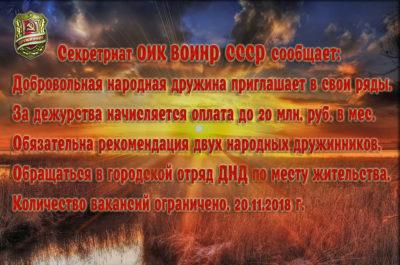 Народная дружина и советская милиция